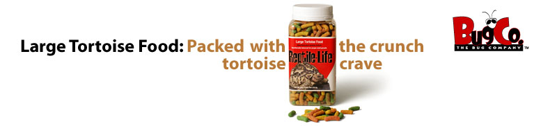 Large Tortoise Food: Packed with the crunch tortoises crave