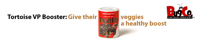 Tortoise Veggie Plus Booster: Give their veggies a healthy boost